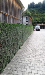 Gartenarbeiten 1 (Mittel)