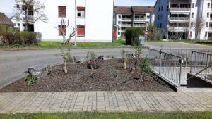 Gartenarbeiten 3 (Mittel)